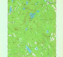 Maine USGS Historical Map North Waterford 806984 1963 24000 by wetdryvac