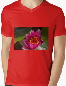 waterlily in the lake Mens V-Neck T-Shirt
