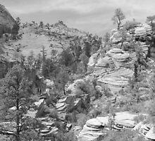 Zion Landscape by Stephen Vecchiotti