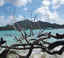 Caribbean island by HelenK