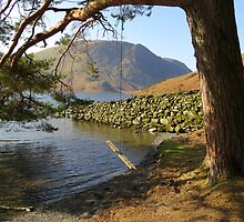 """Swing By"" Crummock Water - Lake District by Rod Unwin"