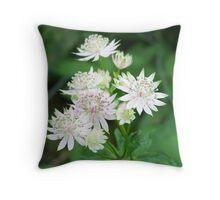 star flower. Throw Pillow
