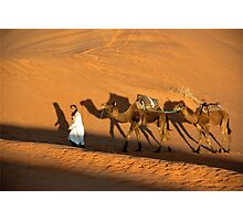 4 Camels Photographic Print