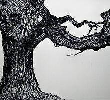 BEECH TREE - ETCHING   by ANNETTE HAGGER