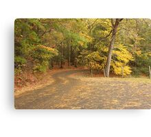 Cades Cove Loop Canvas Print