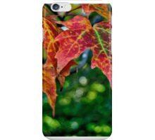 Colors Of The Season iPhone Case/Skin