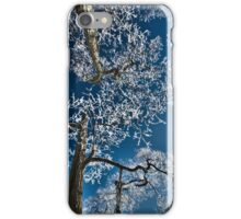 Winters Lace  iPhone Case/Skin