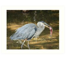 Crane and Fish Art Print