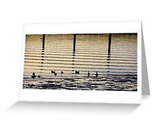 Sunrise Ducks Greeting Card