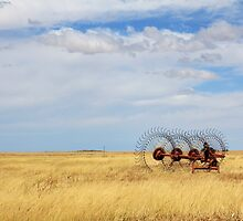 Hay rake - (Farm equipment) Location: Free state, South Africa by Qnita