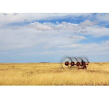 Hay rake - (Farm equipment) Location: Free state, South Africa Photographic Print