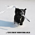 Snow Day by Donna Anglin Husband