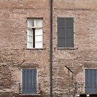 Windows by Kallian