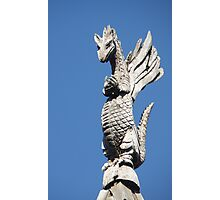 Ren Fen #4 - The Gargoyle Photographic Print