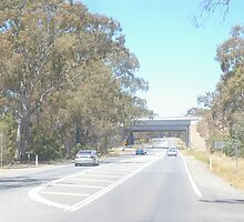 THE OLD CALDER HIGHWAY GOING UNDER THE NEW (UNFINISHED) CALDER FREEWAY, FARADAY END, CENTRAL VICTORIA. by leanimal