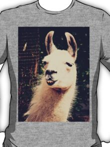 What The Llama T-Shirt