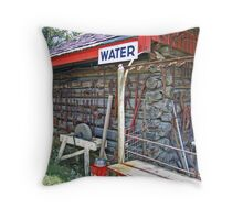 Water Shed Throw Pillow