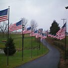 The walk of FLAGS by Diane Trummer Sullivan