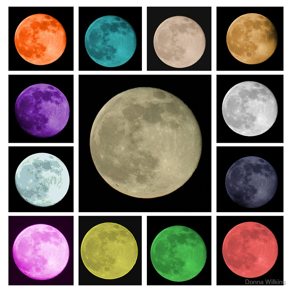 Colors of the Moon by Donna Adamski