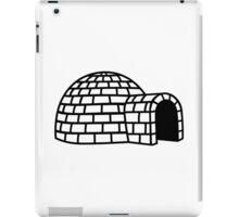 Igloo iPad Case/Skin