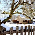 Farm House 2 by saseoche