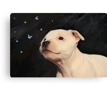 Staffy puppy!! Canvas Print