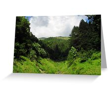 Old River Bed Greeting Card