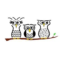 Three Little Owls by ArtwithDog