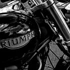 Triumph by Andrew Pounder