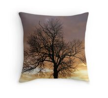 Methringham Fen at sunset Throw Pillow