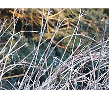 Abstract Steep Photographic Print