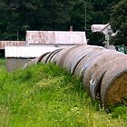 Hay Rolls on the Side of the Road   ^ by ctheworld