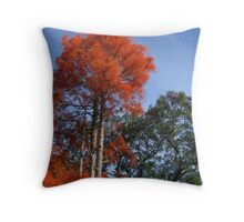 coral tree, Cooranbong, Lake Macquarie Throw Pillow