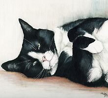 Cozy Tuxedo Cat by Charlotte Yealey