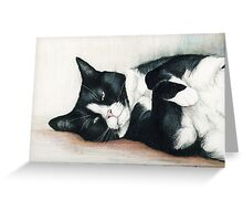 Cozy Tuxedo Cat Greeting Card