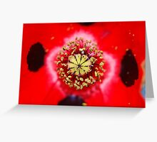 The world of the poppy Greeting Card