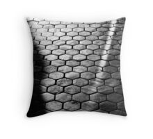 Educational Grounding Throw Pillow