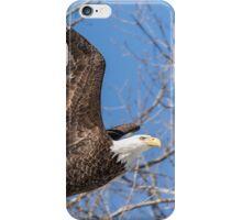 American Bald Eagle 2015-17 iPhone Case/Skin