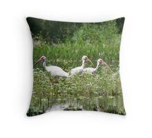 Three White Ibis Throw Pillow