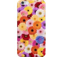 A Plethora of Daisies  iPhone Case/Skin