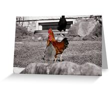 Super Chickens! Greeting Card