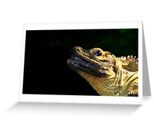 Iguana type lizard....... Greeting Card