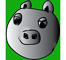 green piggy grey scale Photographic Print