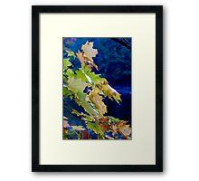 Changing Seasons Framed Print