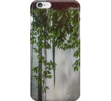 Out of the rain behind a Waterfall iPhone Case/Skin