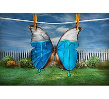 Butterfly - Morpho - I hate it when the colors run Photographic Print