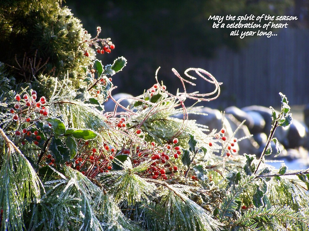 Spirit of the Season... by LindaR