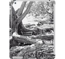 Tangled Roots iPad Case/Skin