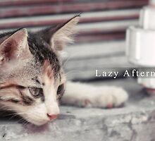 Lazy Afternoon... by Sheraz Khan