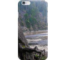 elements iPhone Case/Skin